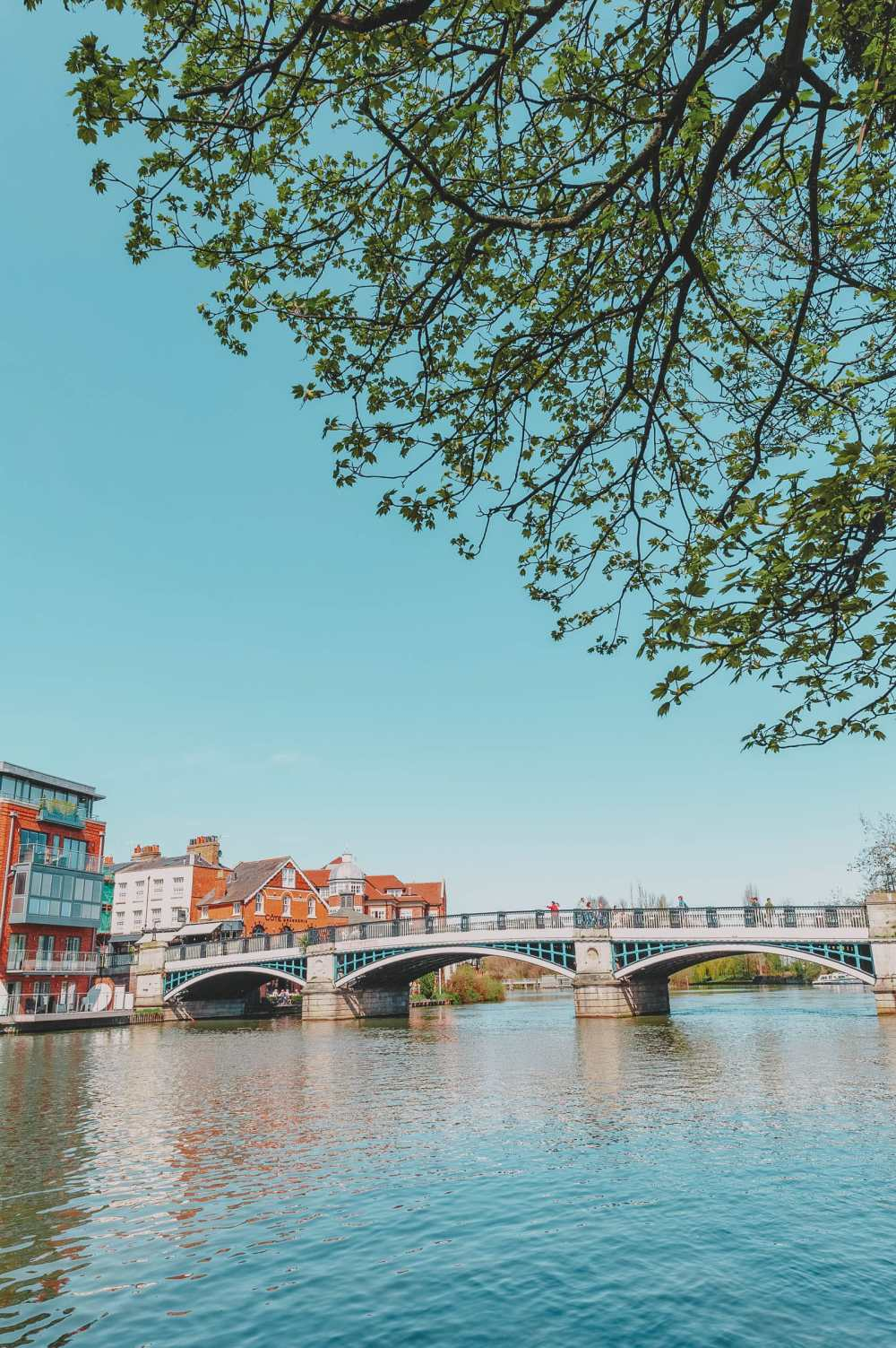 Boat tours River Thames