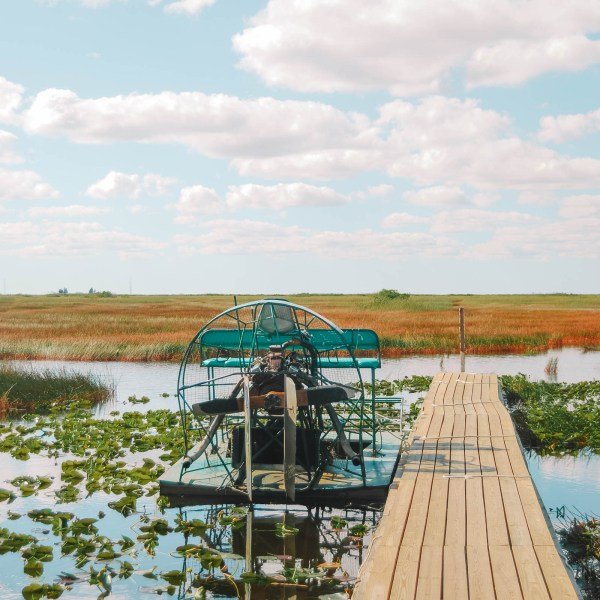 Best Things To Do In The Everglades (2)
