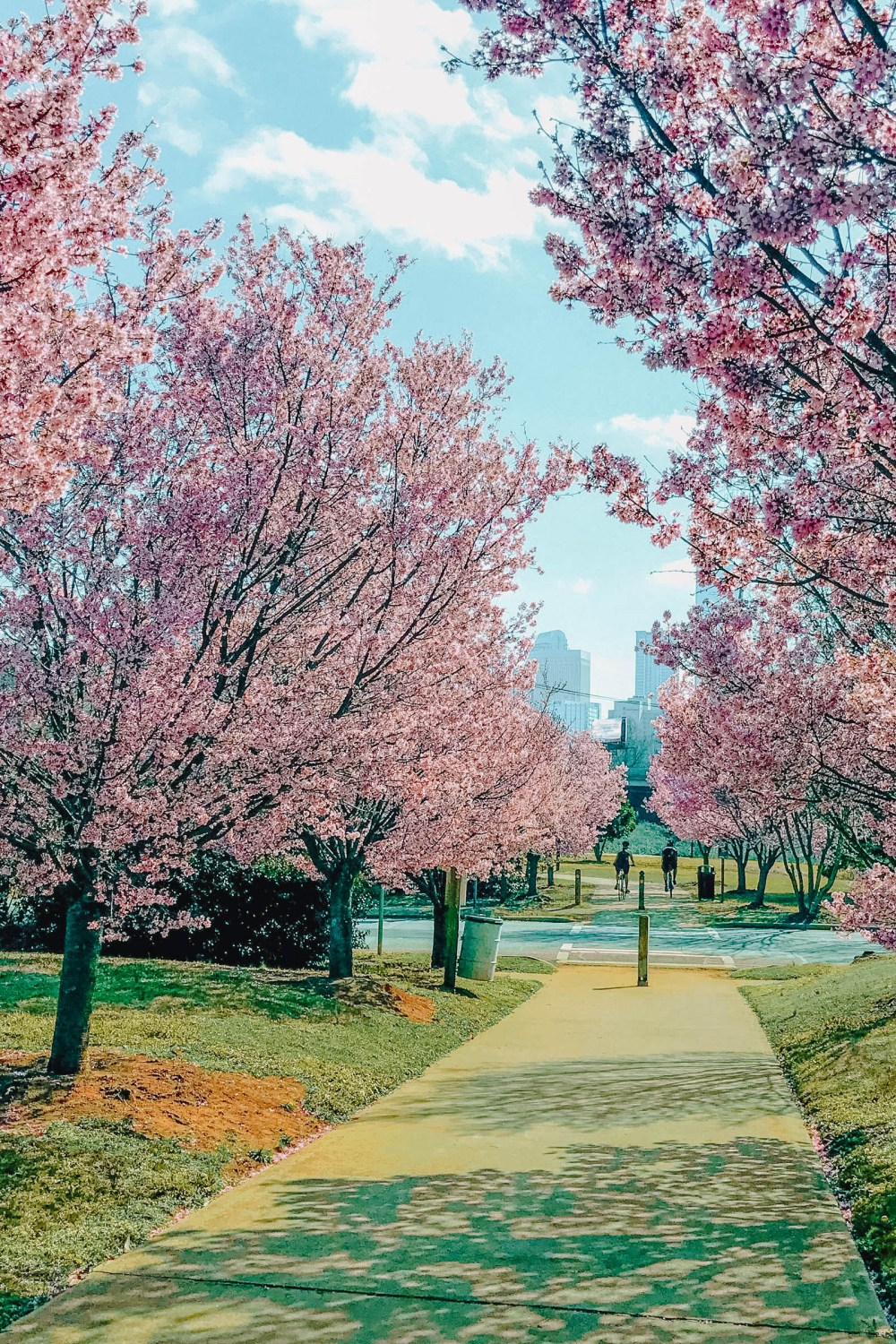 Best things to do in Charlotte (9)