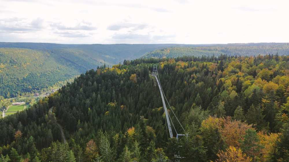 The Black Forest of Germany - Schwarzwald, Baden-Württemberg