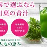 明日葉青汁「大地の恵み」の注目成分「カルコン」で肥満や糖尿病を予防しよう!【商品レビュー】