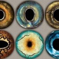Как сделать глаза для игрушек из эпоксидной смолы своими руками