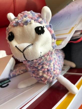 Sock Llama