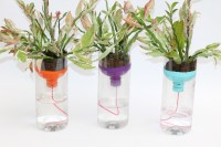 DIY Self-Watering Garden Planters | Handmade by Kelly