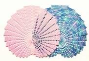 seashell fractal doily