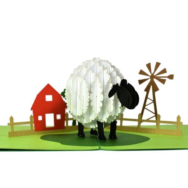 sheep popup card