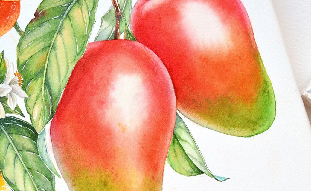 Watercolour Masterclass – Fruit