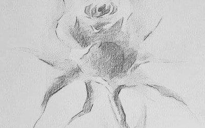 Kunsten i hvordan tegne rose.