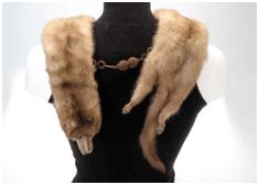 Removing the Fox Fur