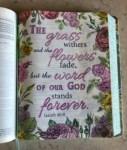 Isaiah Declarations