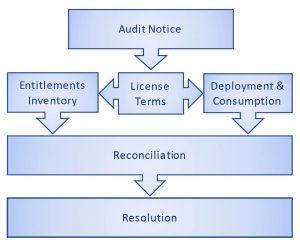 Audit graphic no border