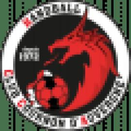logo HBC Cournon d Auvergne