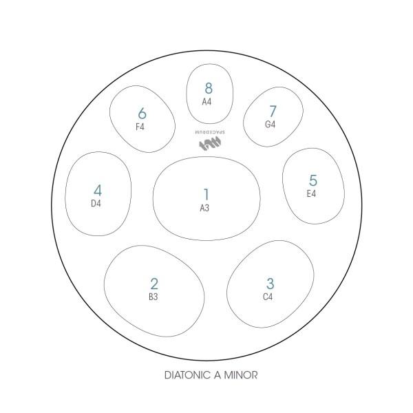 ハンドパン 8和音モデル 55 cm • Handpan Diatonic A minor • フランス製 • New Design