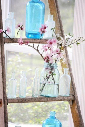 freshly cut blossom