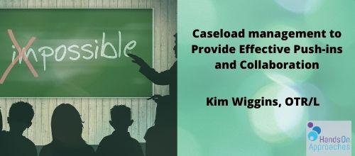 Caseload Managment 500 _ 220 - Kim W - HOA