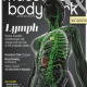 Massage and Bodywork Magazine for the Visually Impaired