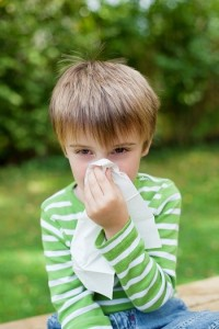 cold flu enterovirus rsv