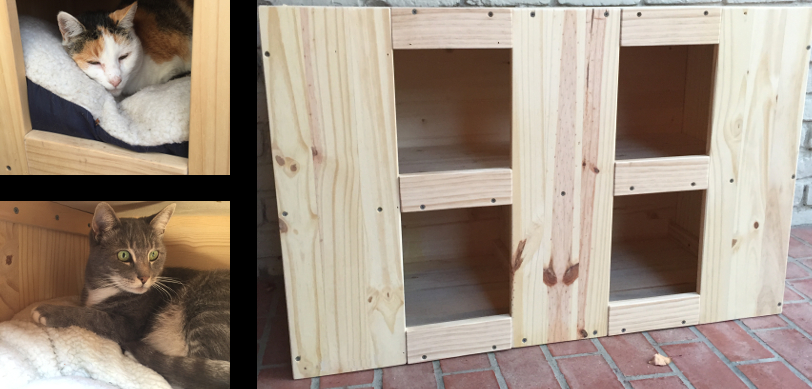 Building the Cat House Your Kitties Deserve
