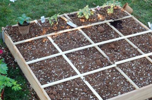 Square foot garden and gas can safety
