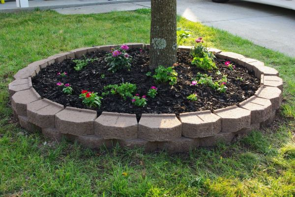 amazing ideas flower beds