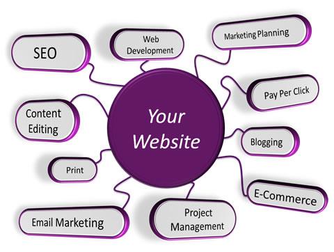 Website Development in Goa