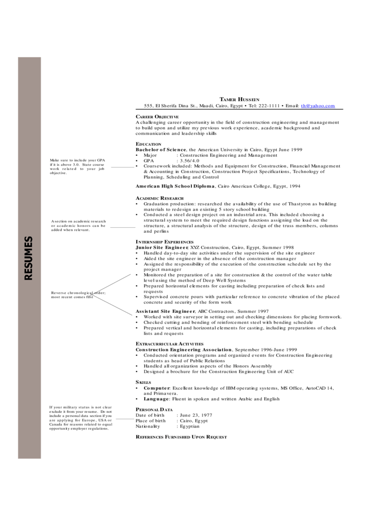 Chronological Resume Examples
