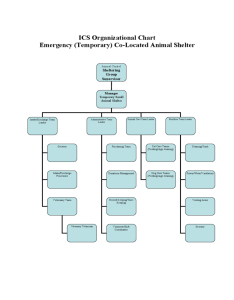 Ics organizational chart animal shelter also fillable printable pdf  forms rh handypdf