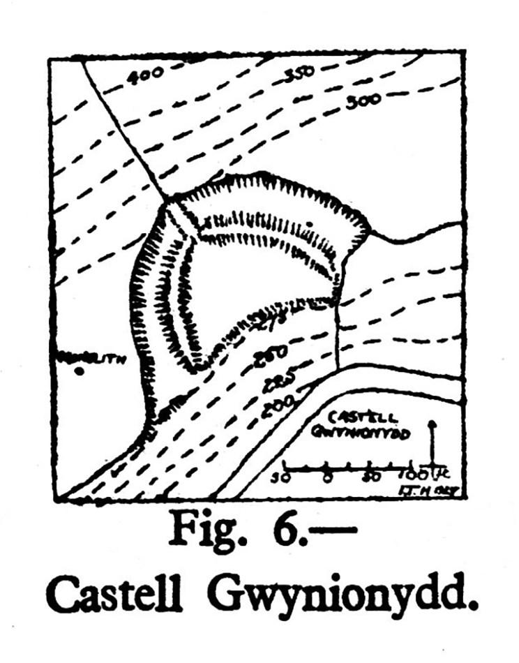 Cynllun safle Castell Gwynionydd