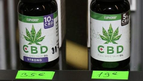 Viele wollen mit der Cannabis-Legalisierung lediglich groß rauskommen oder durch grünes Gold reich werden