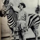 cropped-zebra2.jpg