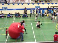 Ball Races