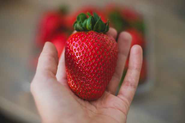 close up photography of strawberry