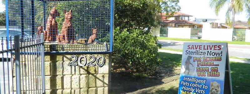 Sending Pets to Perth WA
