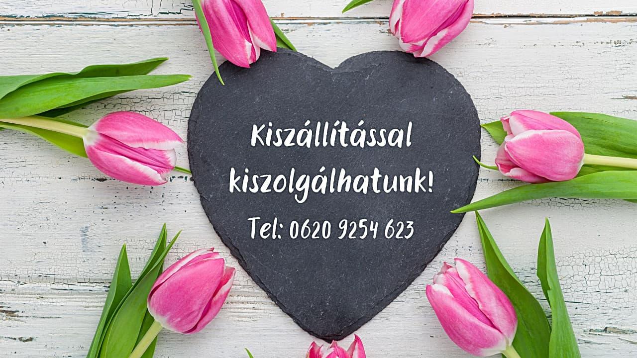 viraguzlet_pesterzsebet