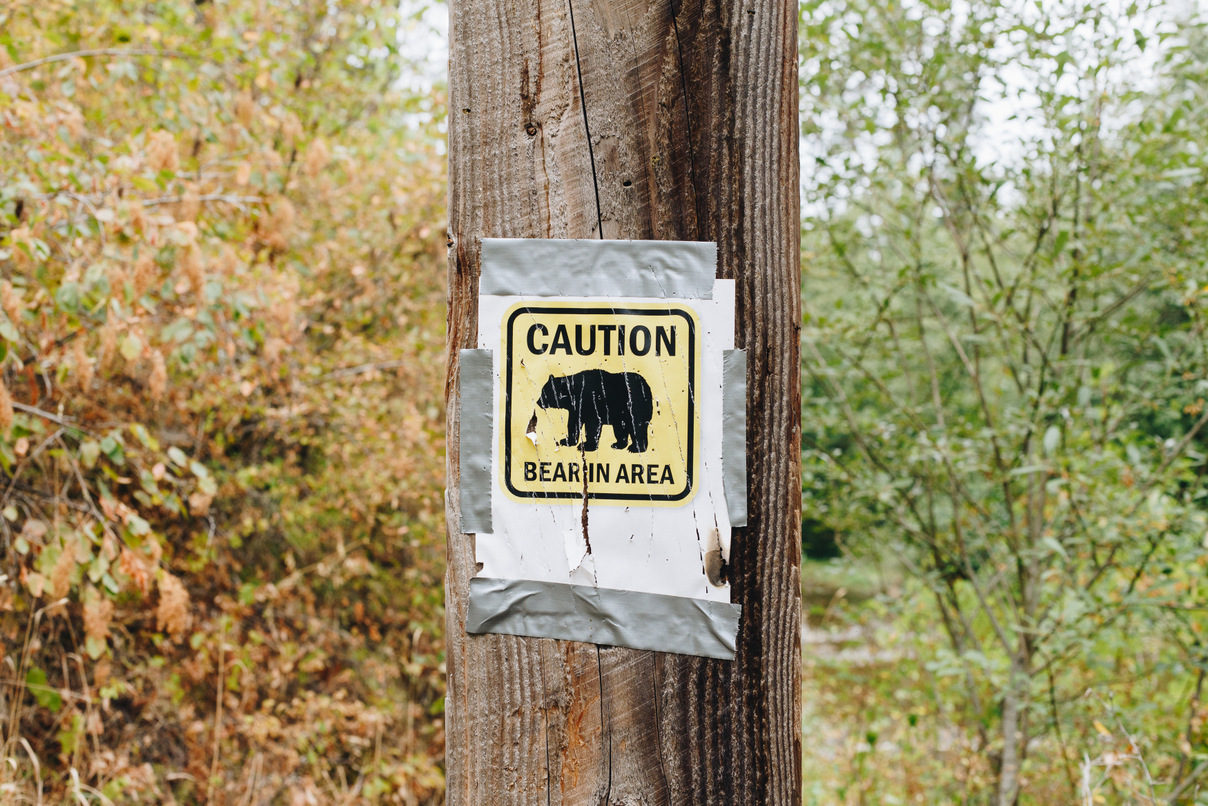 bear in area sign, colville woods