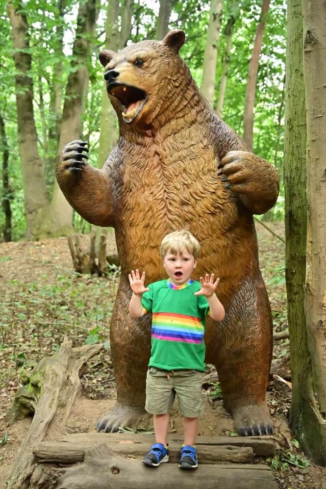 Brown bear on Woodland Walk