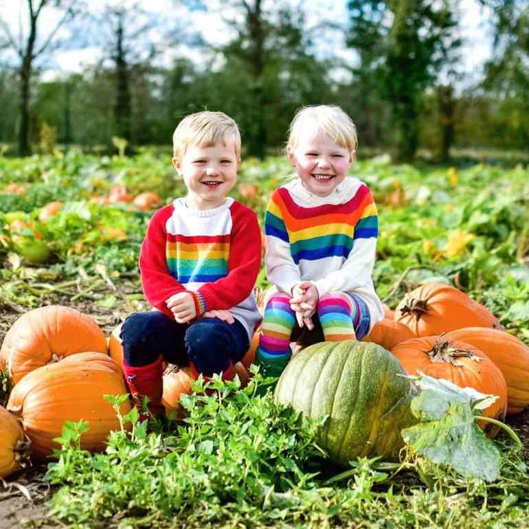 pumpkin picking in Surrey