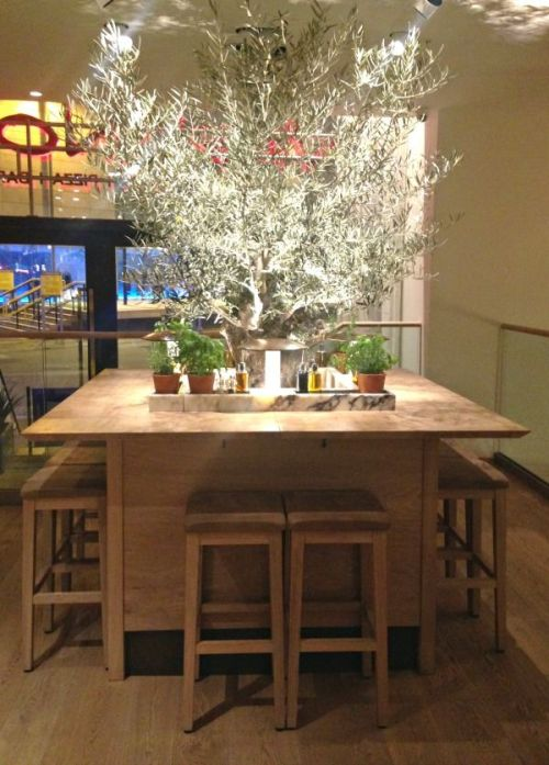 tree in table at vapiano manchester