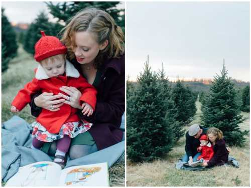 christmas-tree-farm-mini-sessions-annapolis-family-photographer_1405