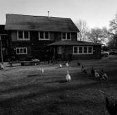 farm house hannahs edited1