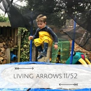 Living Arrows Week 11 Finding fun in the mundane