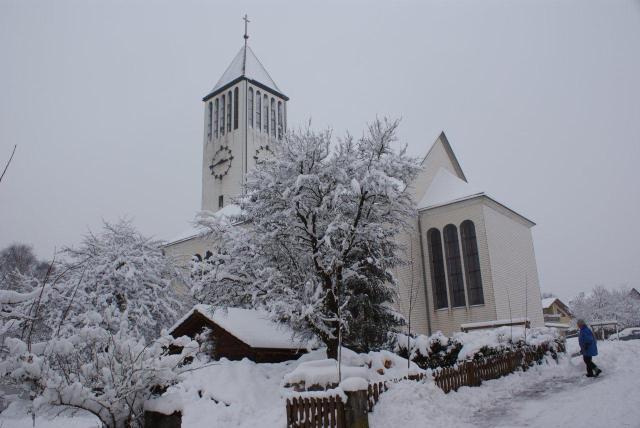 JudthGöbl-Winter-Stephanshart