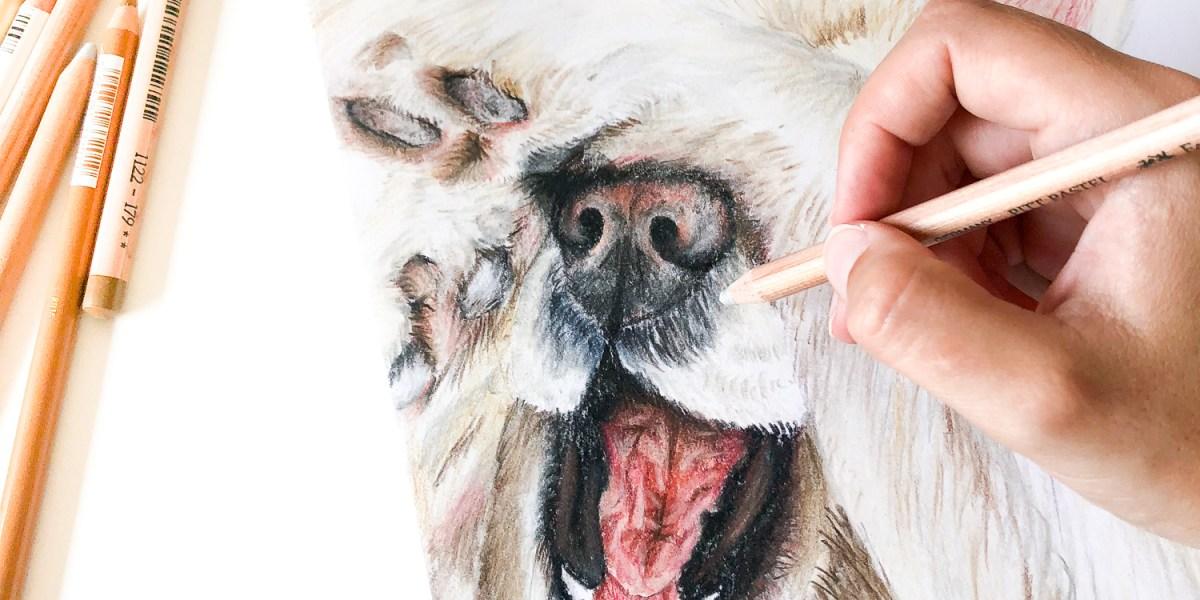 Your Individual Animal Portrait