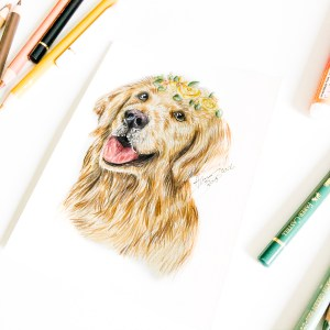 Mini Animal Portrait Golden Retriever