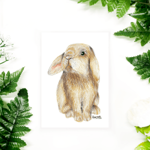 "Easter postcard with bunny/rabbit ""Pascal"""