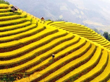 North Vietnam Package 5 Days
