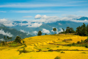 best time visit vietnam