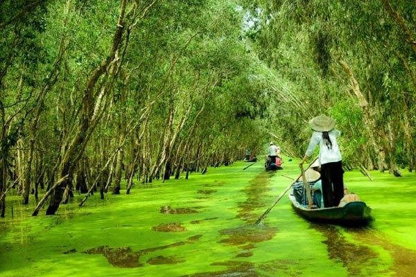 Mekong Delta Tourist Attractions 7