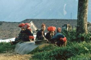 Sapa in 1992