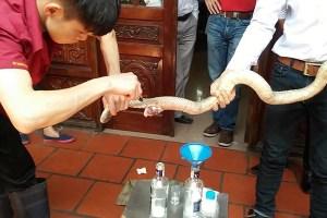 Thịt Rắn (Cobra at Lệ Mật village)
